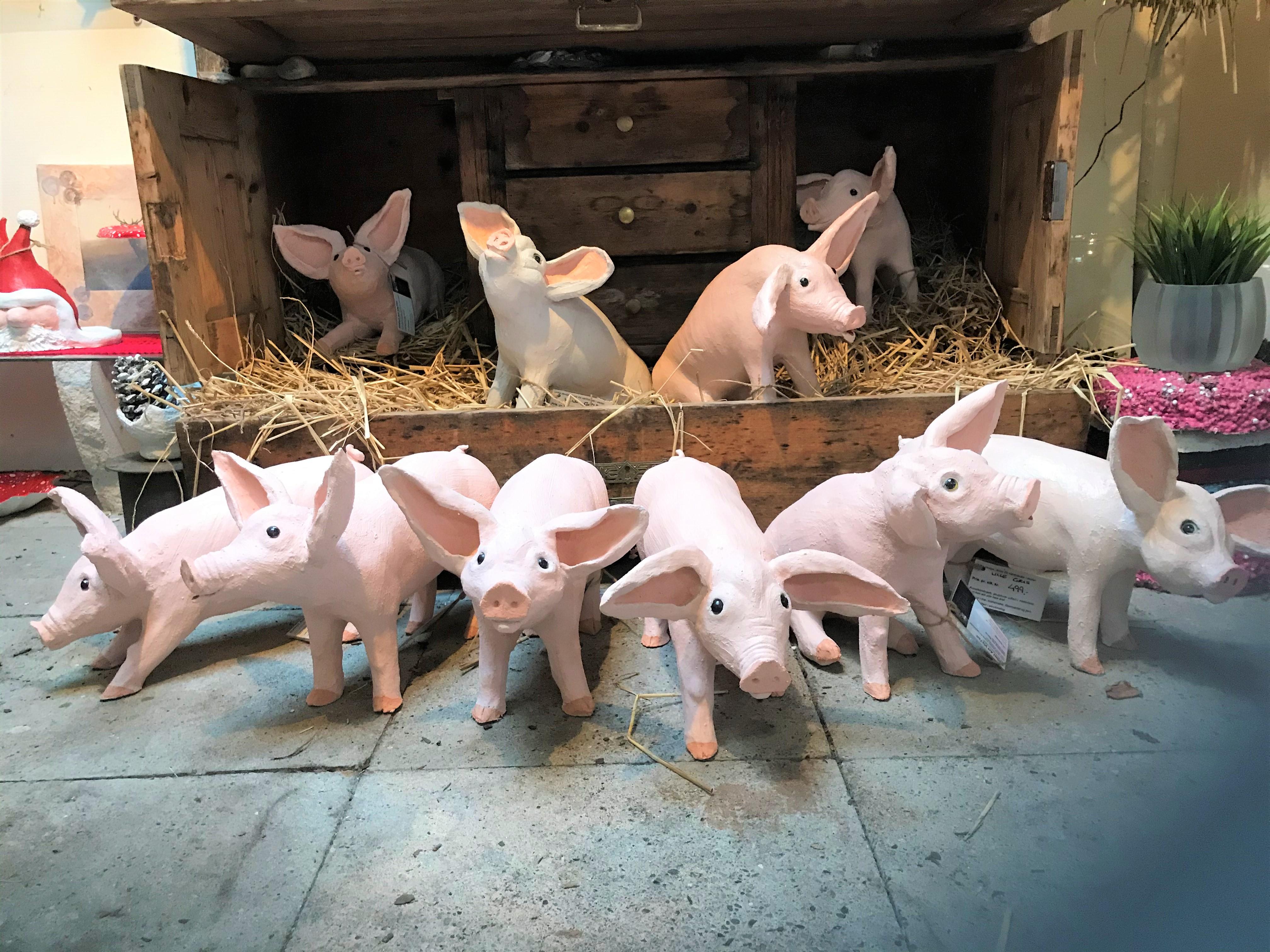 Små grise