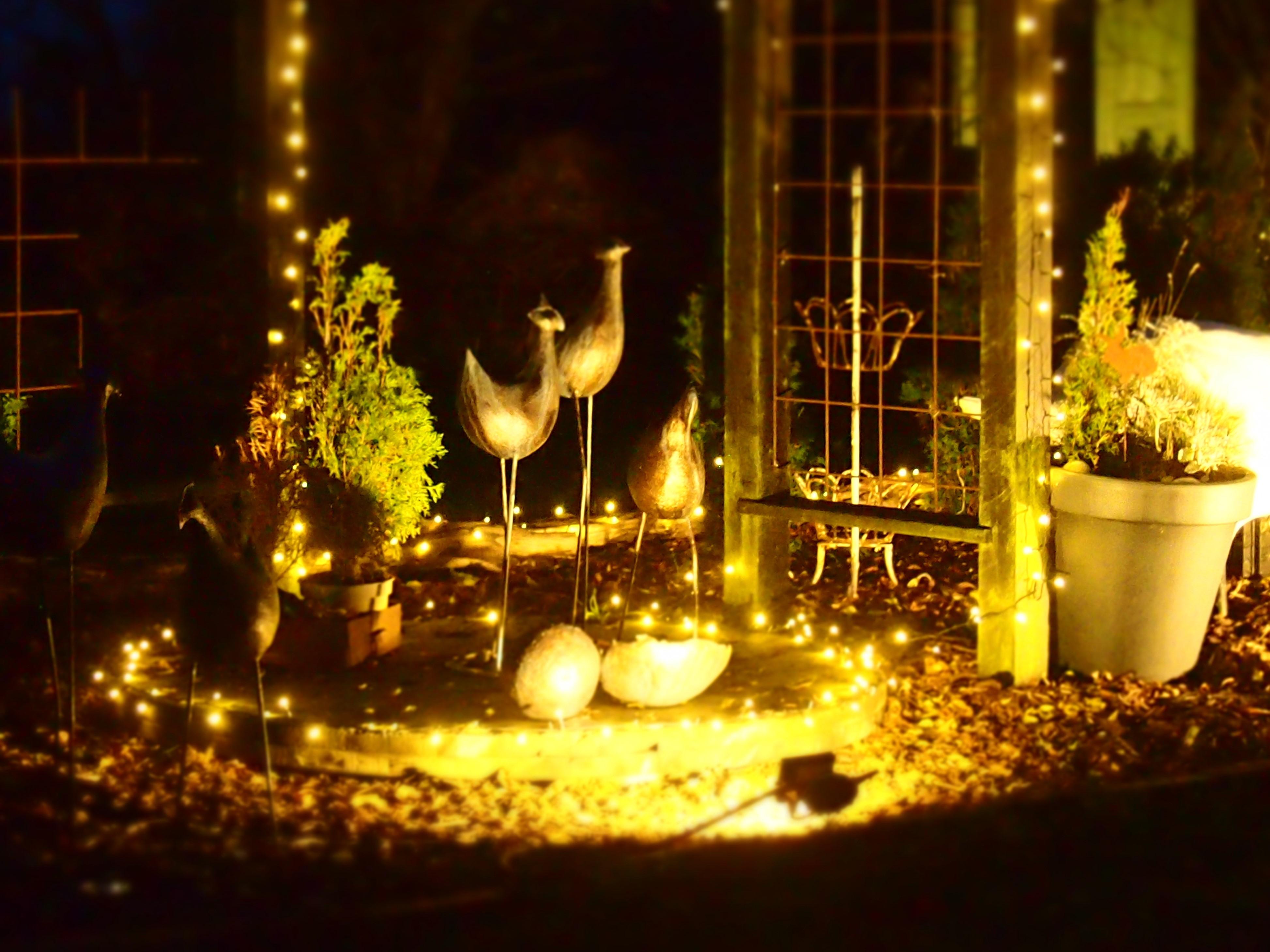 Havekunst i lys