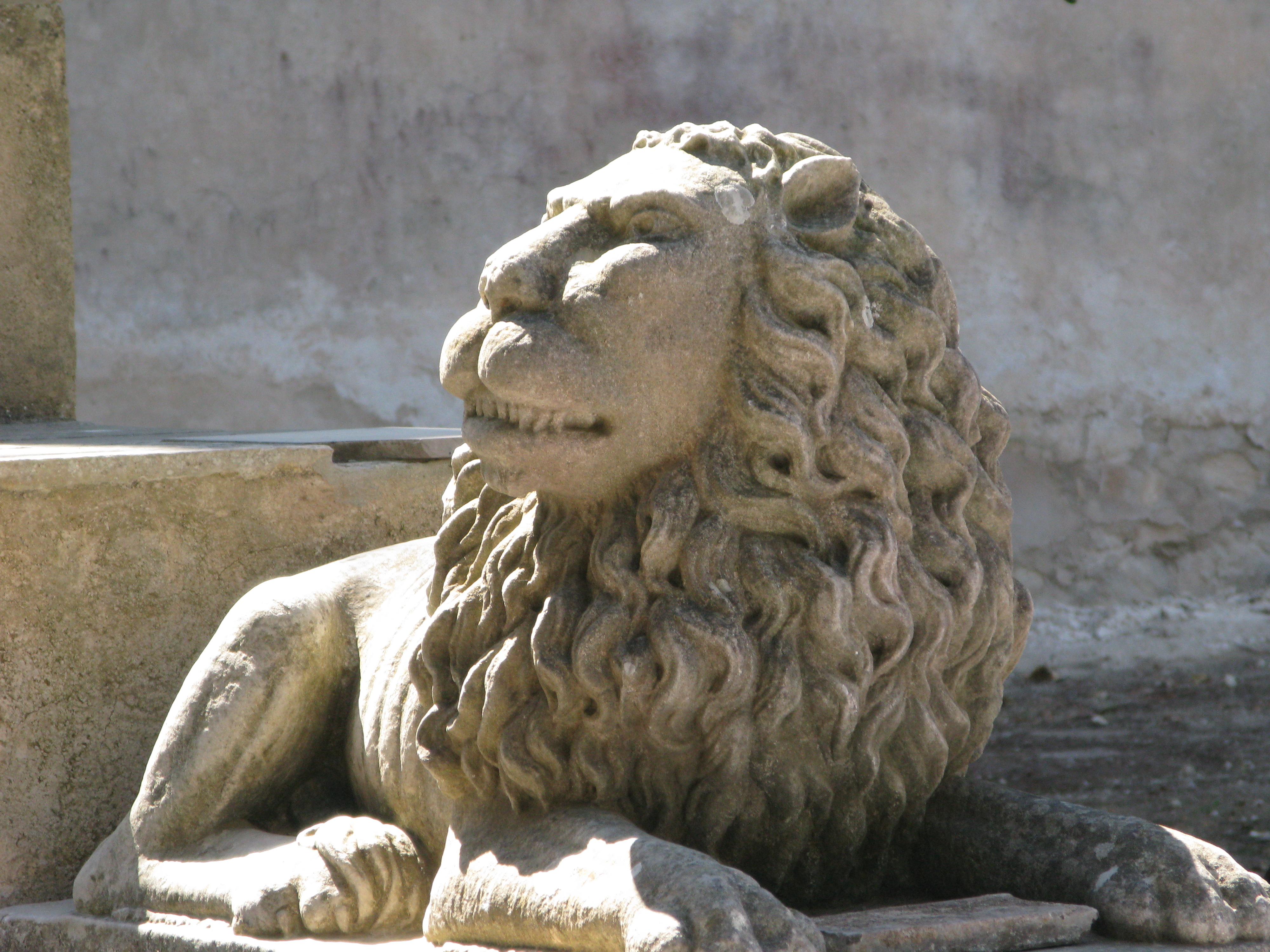 Donnafugata Giardino