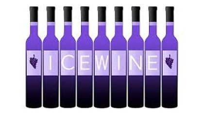 Port/Ice Wine Bottles (1 count)