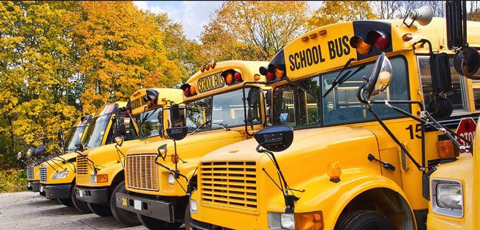 buses.JPG