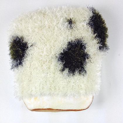 Furry Moldy Bread
