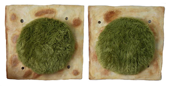 Two Saltines with Mold