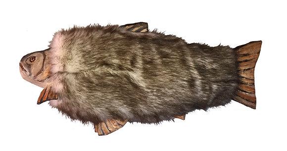 Northern Fur Bearing Fish