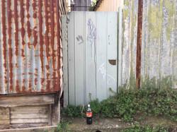 "Fiona Haasz ""Coke"""