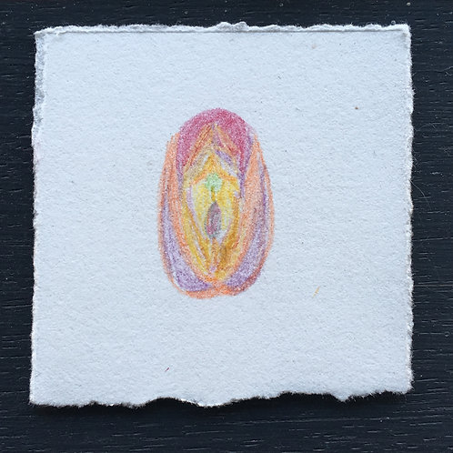 little e(vulvas) #71