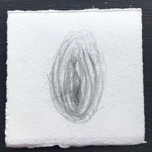 little e(vulvas) #48