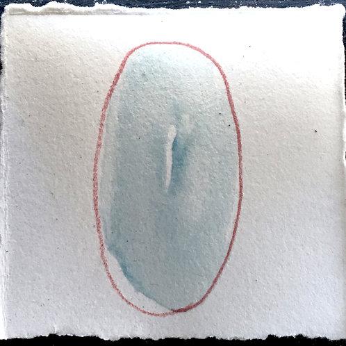 little e(vulvas) #81