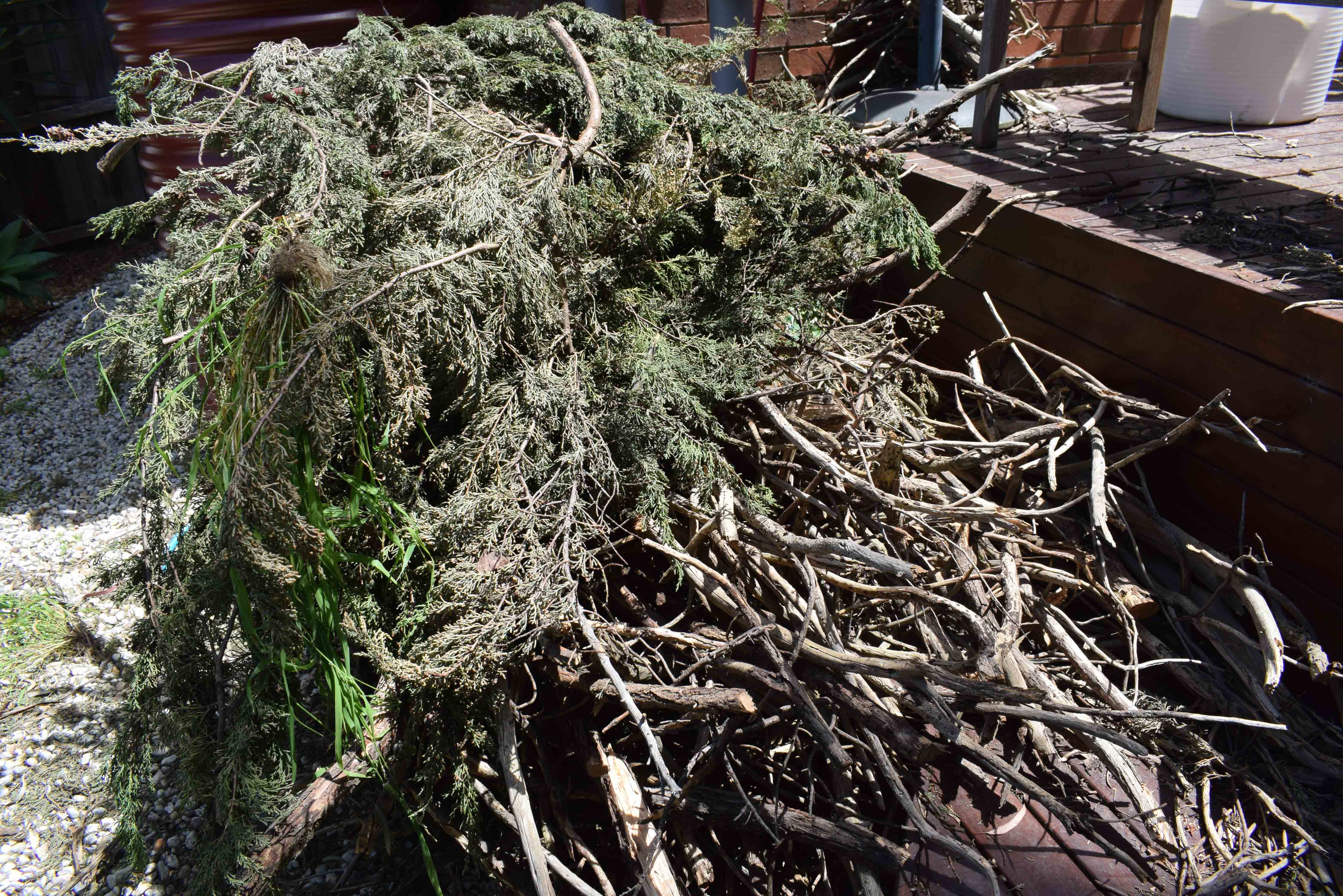 Pile of Sticks and Greens