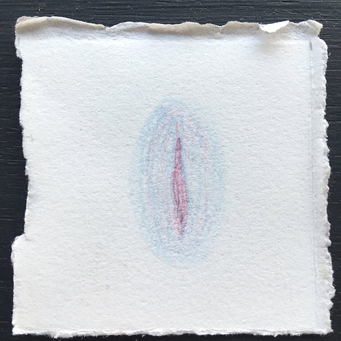 little e(vulvas) #53