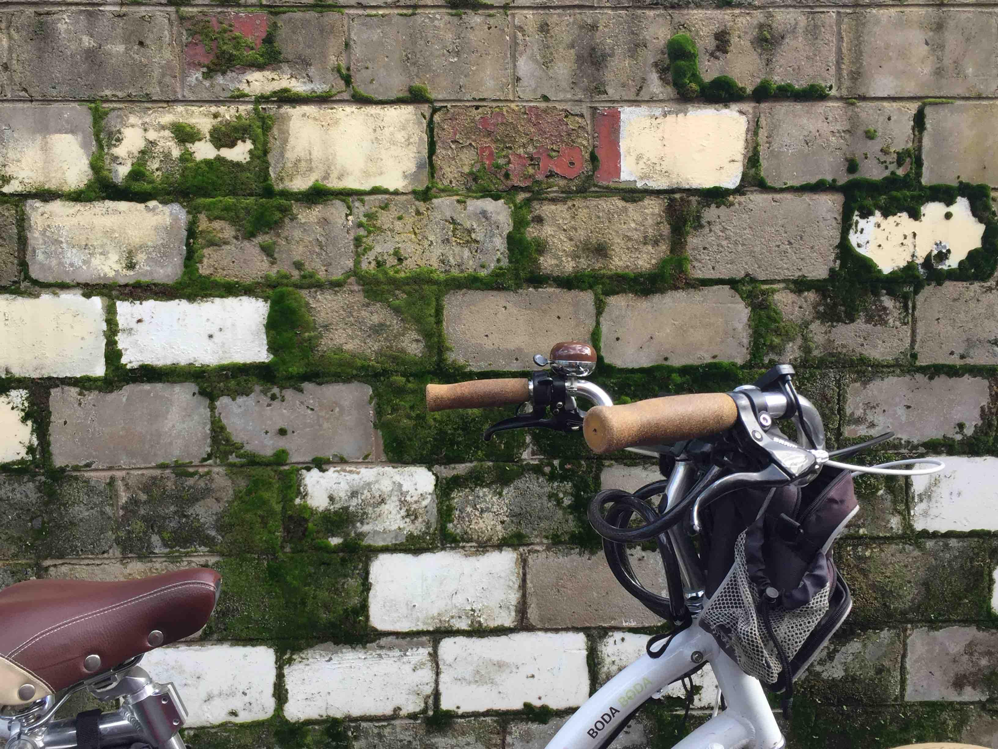 "Fiona Haasz ""Bike"""