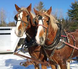 John and Carol with wagon ride