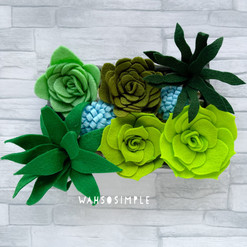 Design your own Succulent Garden Box