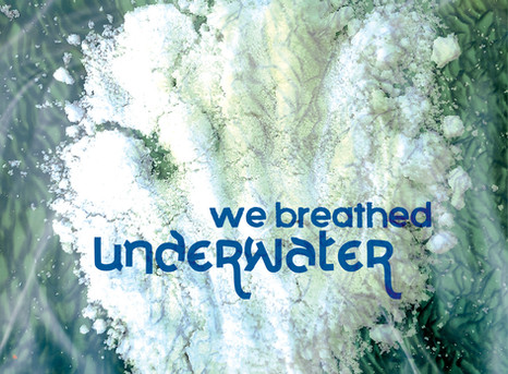 We Breathed Underwater: now booking visits