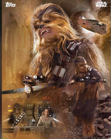 Star Wars chewbacca frames