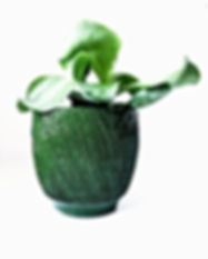 planter by studio kemp