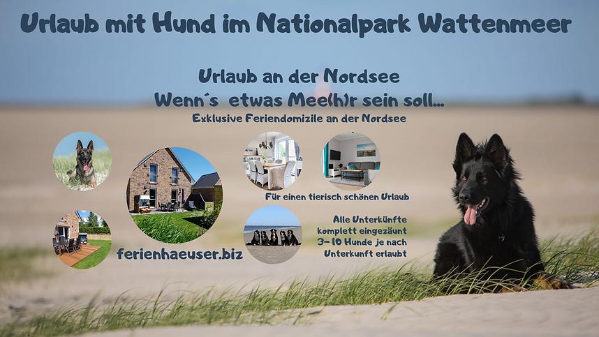 urlaub-mit-hund-im-nationalpark-wattenme