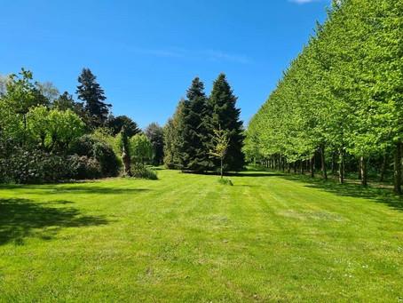 Sehenswürdigkeiten und Aktivitäten in Tating bei St. Peter-Ording: Hochdorfer Garten