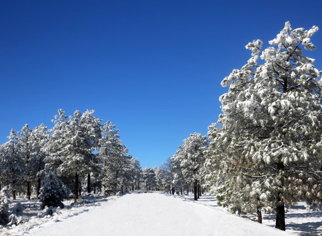 Be Ready for Winter: Winter Running