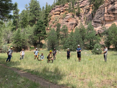 Volunteers Improve the AZT Near Walnut Canyon