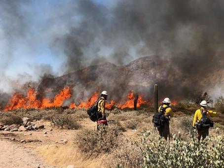 AZ Trail News - June 24, 2021