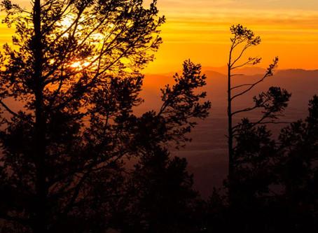 COVID-19 and the Arizona Trail
