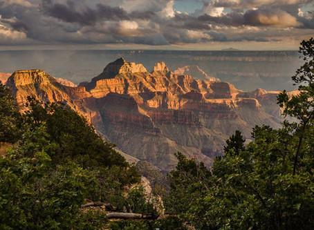 The Arizona Trail - Covid-19 Concerns
