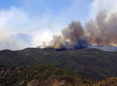 Maverick Fire in Mazatzal Mountains