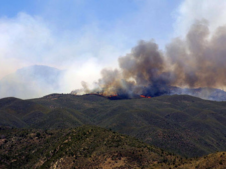 Maverick Fire in Mazatzal Mountains