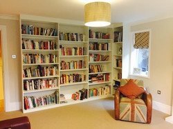 Custom made fitted bookcases