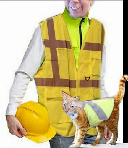 Class 2 Two-Tone Surveyor Safety Vest