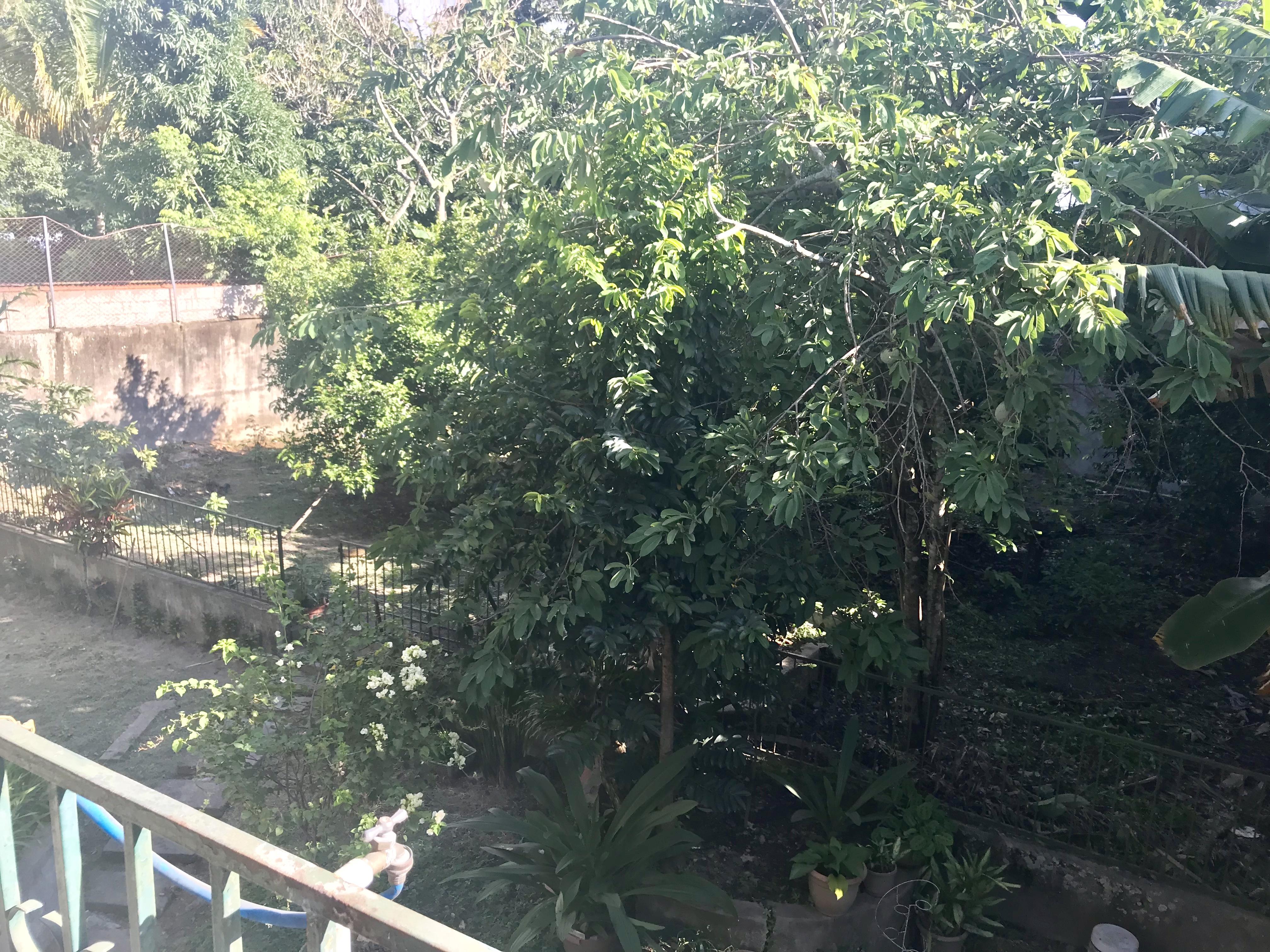 MIA0107_Casa_en_Venta_No_Privado_para_Inversión__75_av._Norte_zona_san_antonio_abad_jardin_5