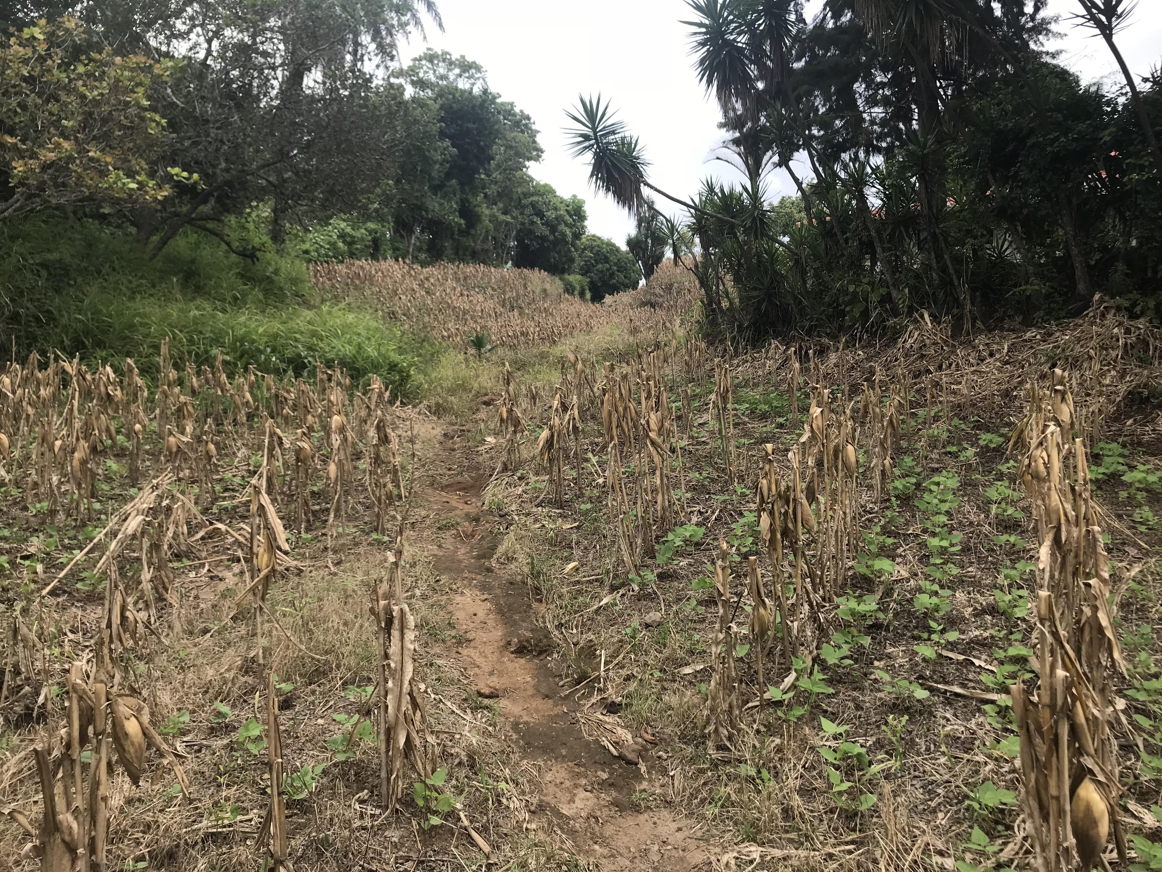 SAA0301 Terreno en Venta El Congo Carret