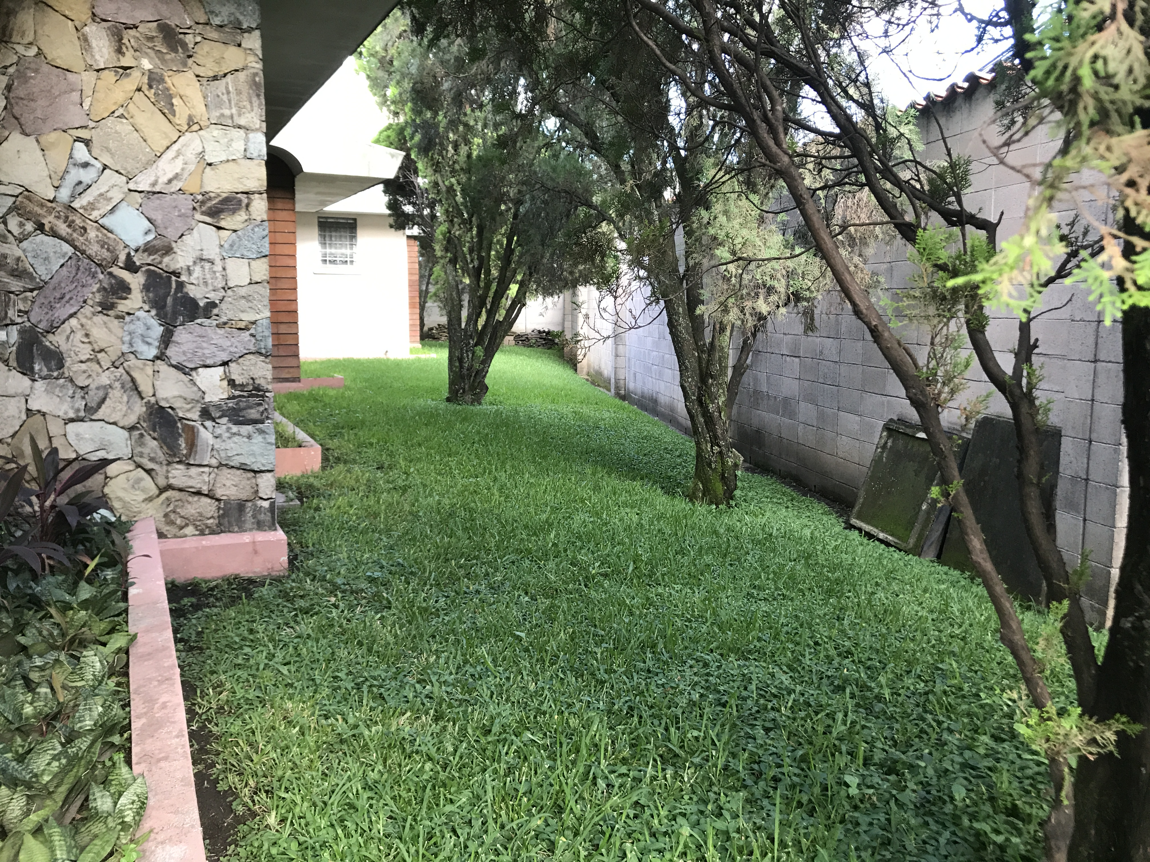 Casa de Venta Masferrer  jardin 2