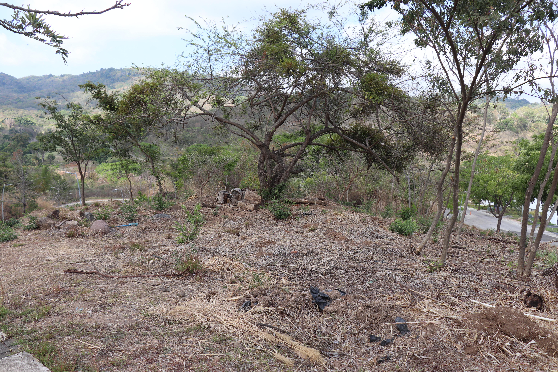 CPA0309 Terreno en Venta en El Encanto2.