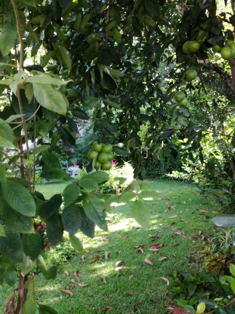Casa venta Cumbres de la escalon SS jardin