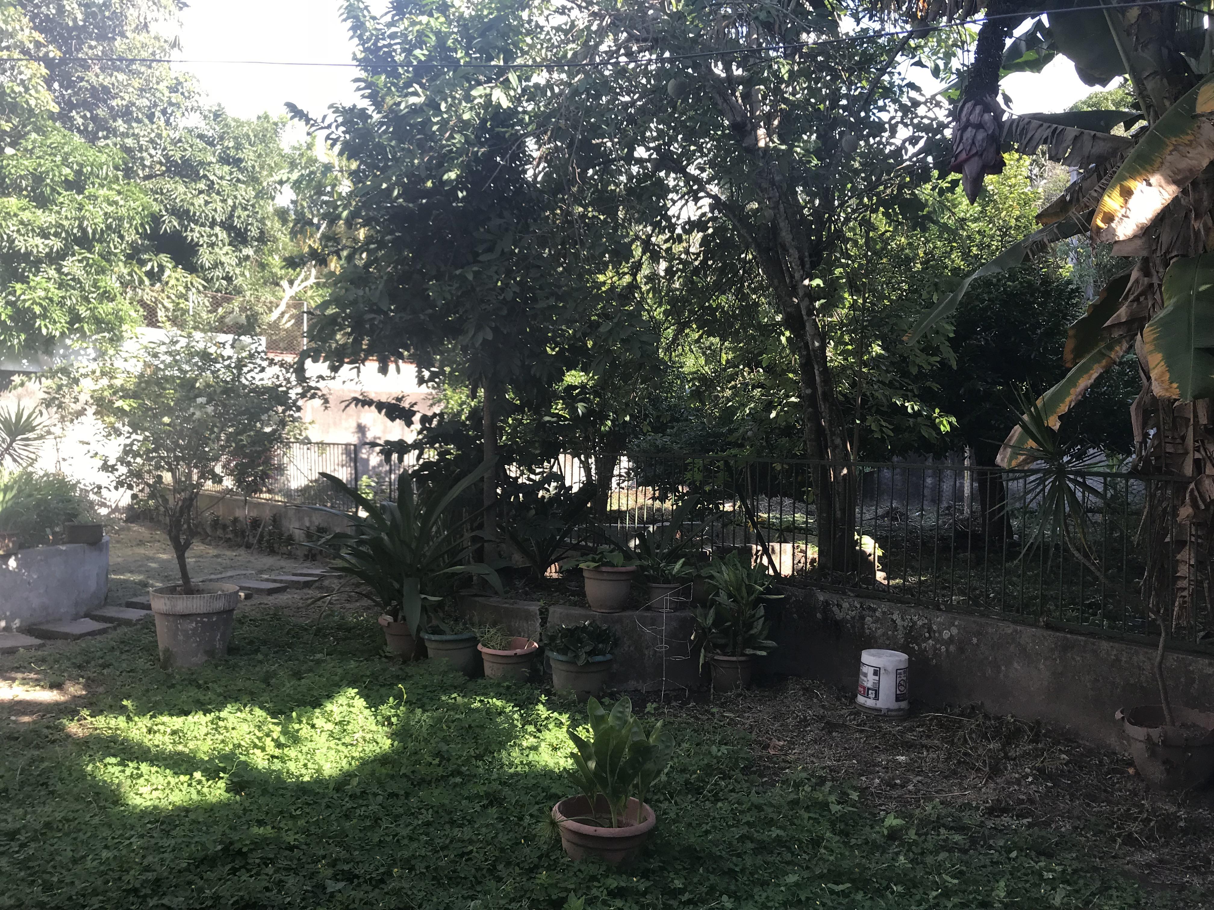 MIA0107_Casa_en_Venta_No_Privado_para_Inversión__75_av._Norte_zona_san_antonio_abad_jardin_3