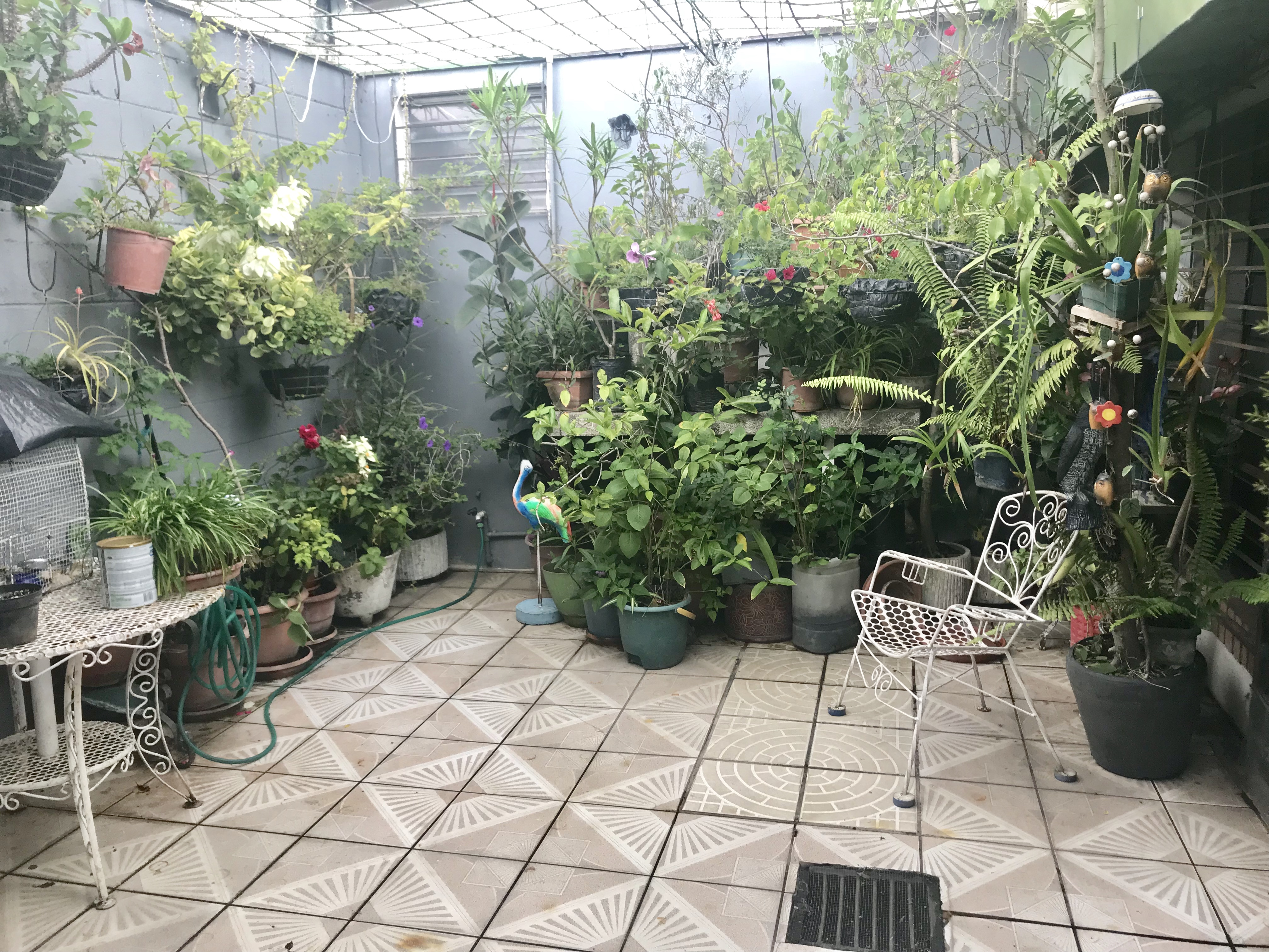MIA0106 Casa en Venta en Privado Colonia Miramonte jardin 2