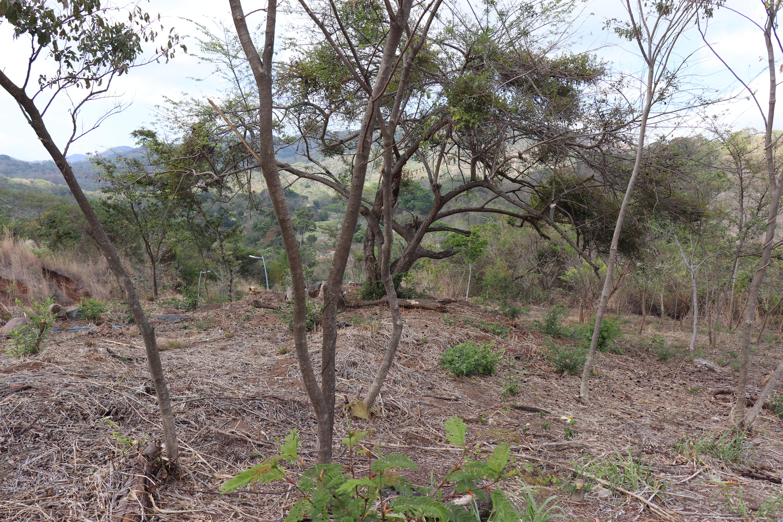 CPA0309 Terreno en Venta en El Encanto 6