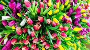 Подарки на 8 марта женщинам-коллегам
