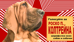 Comrade Roscoe (1920x1080)