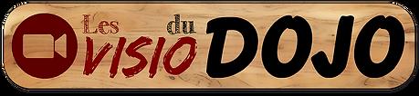 logo visio du dojo.png