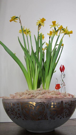 Narcissus Dog