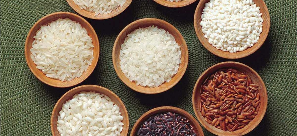rice-all-1200x550.jpg