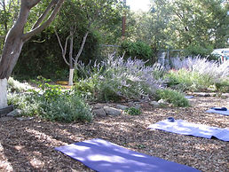 yoga off site 1-day 2.jpg