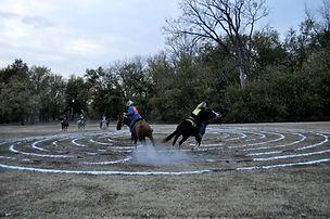 2. galloping Troy Ride copyright Jim Buc