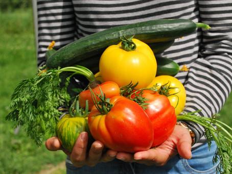 Jardiniers Solidaires 2019