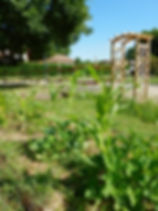 Jardin reconnaissant