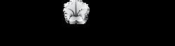 logo-omni-cc