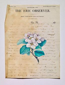 The Erie Observer